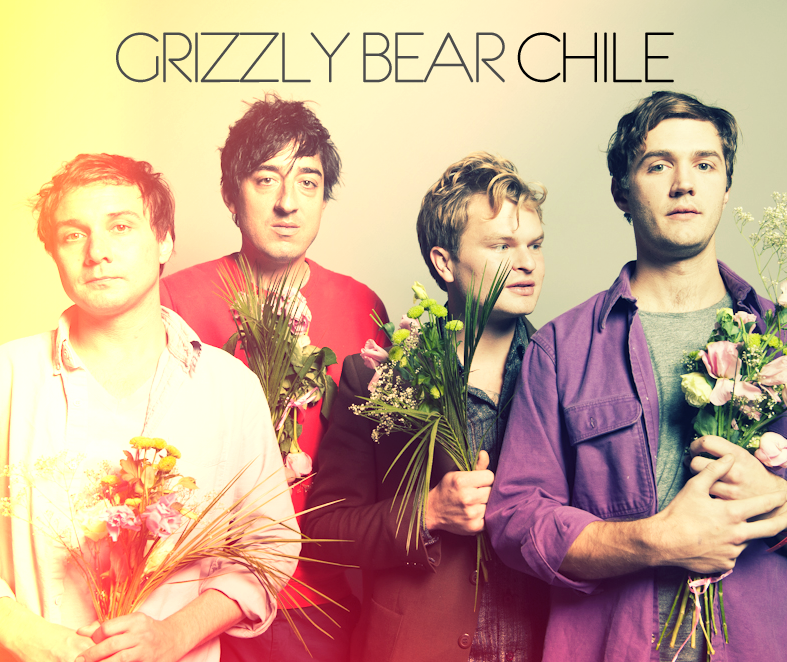 Grizzly Bear Chile